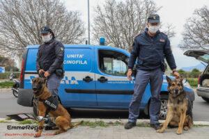 """Operazione Polizia """"Alto Impatto"""""""